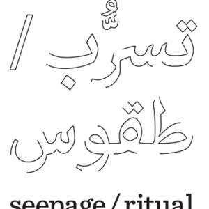 seepage/ritual // The 2017 Abraaj Group Art Prize