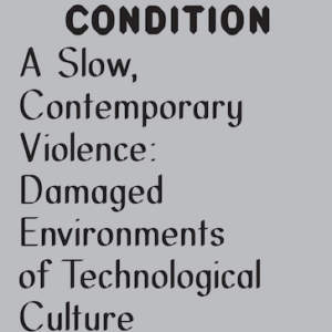 A Slow, Contemporary Violence // Damaged Environments of Technological Culture
