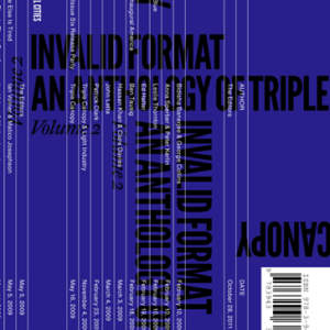 Invalid Format // An Anthology of Triple Canopy, Vol. 2