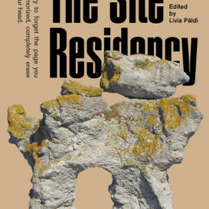 The Site Residency